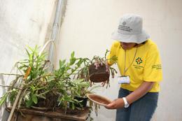 Secretaria de Saúde intensifica ações contra a Dengue