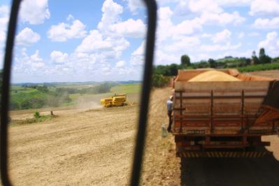 Paraná deverá colher 19,85 milhões de toneladas de grãos na safra 2010/2011
