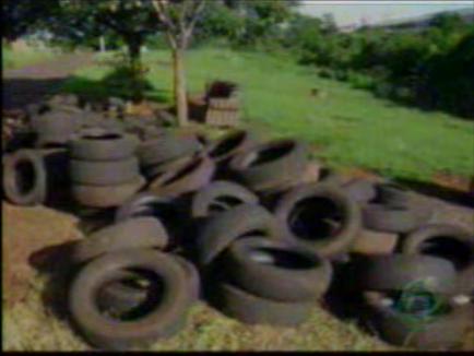 Chefe do setor Ambiental de Cambé fala sobre o crime ambiental nas margens do ribeirão Cambezinho.(Vídeo)