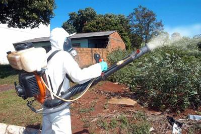 Secretaria da Saúde amplia rigor no uso de inseticida contra a dengue