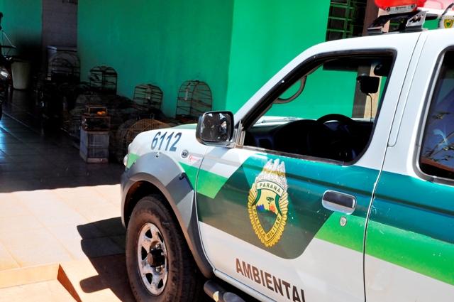 POLÍCIA MILITAR AMBIENTAL APREENDE AVES SILVESTRES MANTIDAS EM CATIVEIRO IRREGULARMENTE.