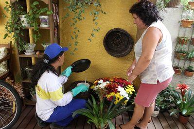 Vigilância realiza novo levantamento da dengue
