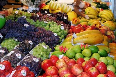 Paraná cria sistema de rastreamento de alimentos de origem vegetal