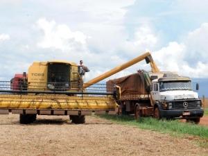 Brasil se prepara para tomar liderança dos Estados Unidos em soja
