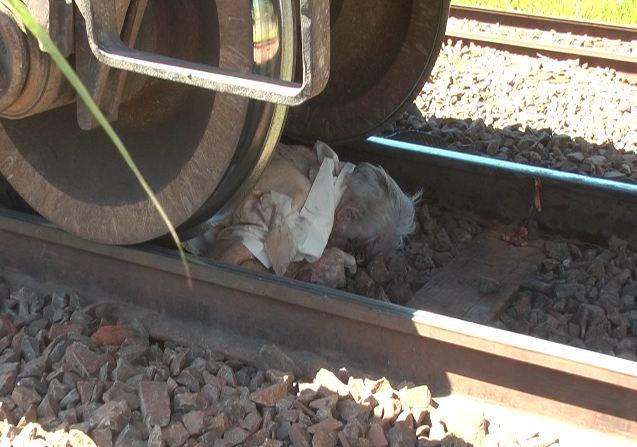 Homem morre ao ser atropelado por trem em Cambé