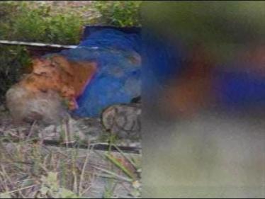 Homem morre atropelado por trem em Cambé (Vídeo)