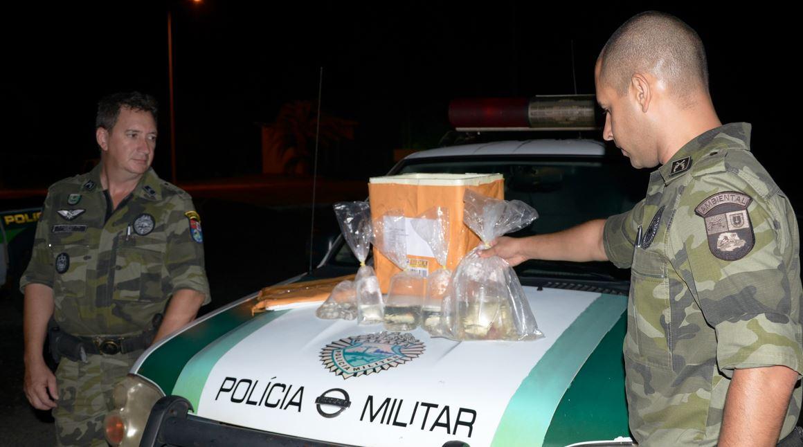 Polícia Militar Ambiental apreende encomenda com cinco peixes enviados  pelos Correios em Londrina.