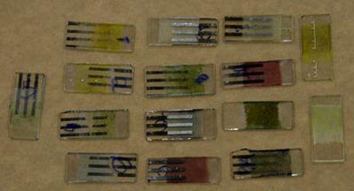 Laboratório de Óptica da UEL faz dispositivos com polímeros