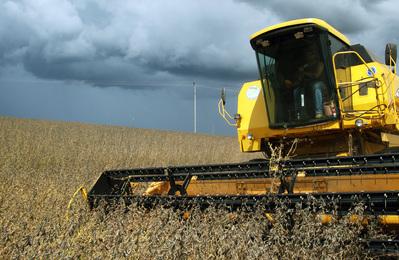 Safra de grãos 2013 será 23% maior que a anterior