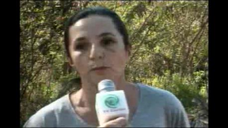 Horta comunitária do Jardim Tupi causa poluição ambiental em Cambé (Vídeo)