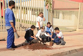 Dia Internacional do Meio Ambiente é comemorado com plantio de árvores em Cambé