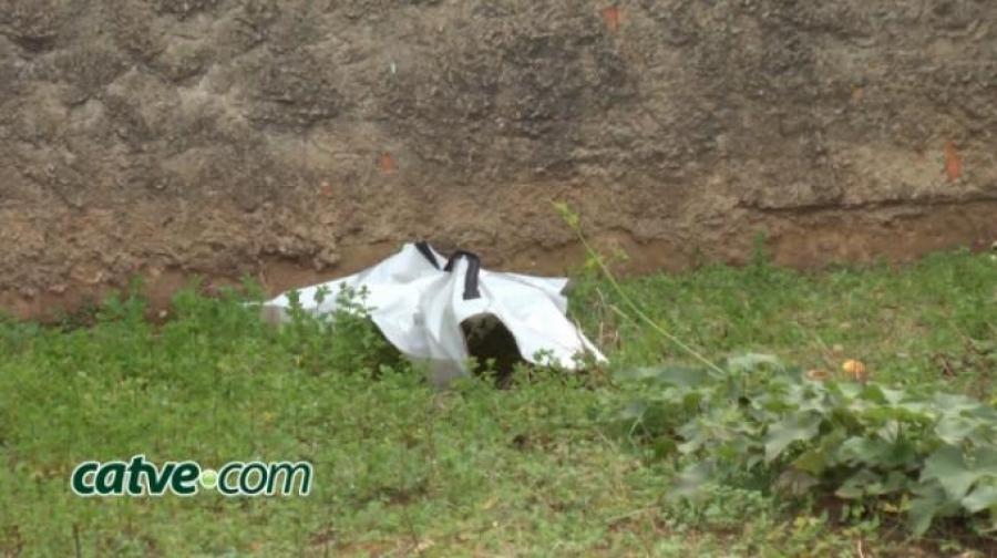 Recém-nascida é encontrada morta em terreno baldio no PR