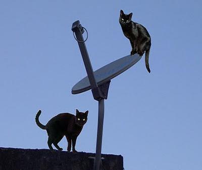Justiça restabelece validade total de regulamento para setor de telecomunicações