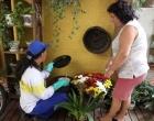 Vigilância em Saúde divulga o resultado do levantamento do índice da dengue 3,8% em Cambé