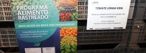 Paraná é o primeiro Estado a exigir rotulagem de frutas, verduras e legumes