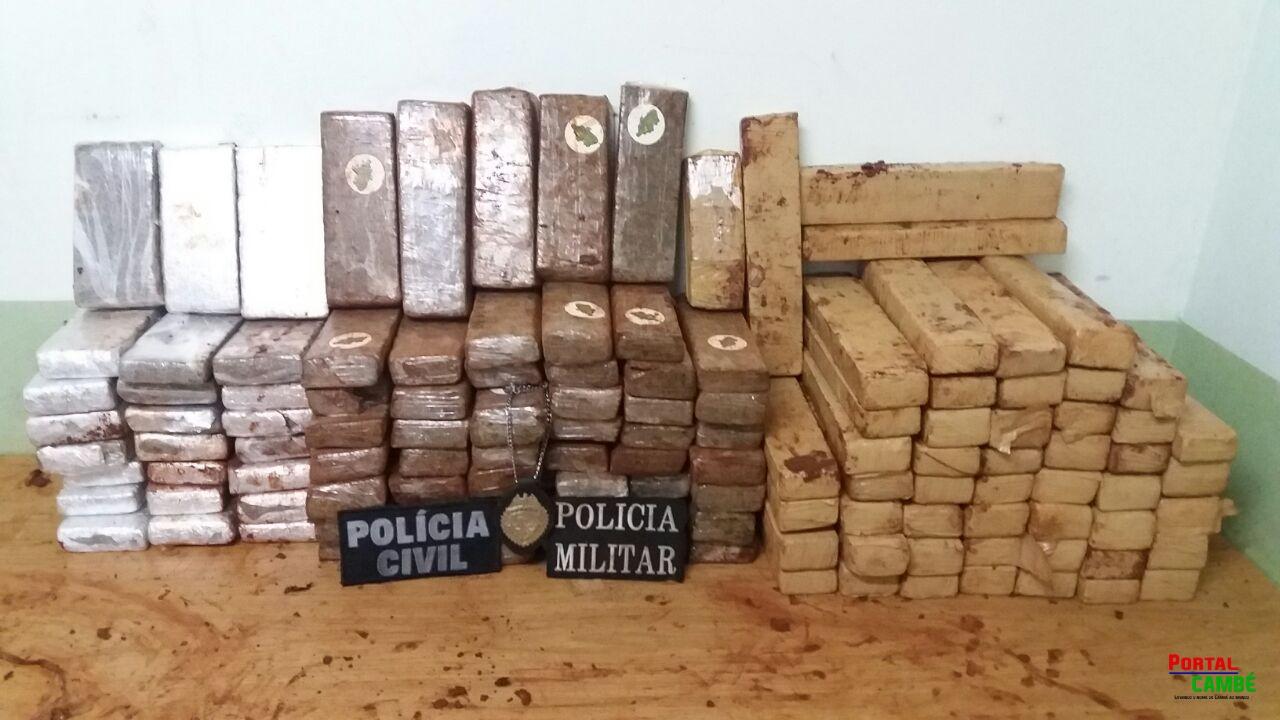 Polícia Civil de Cambé apreende grande quantidade de Maconha