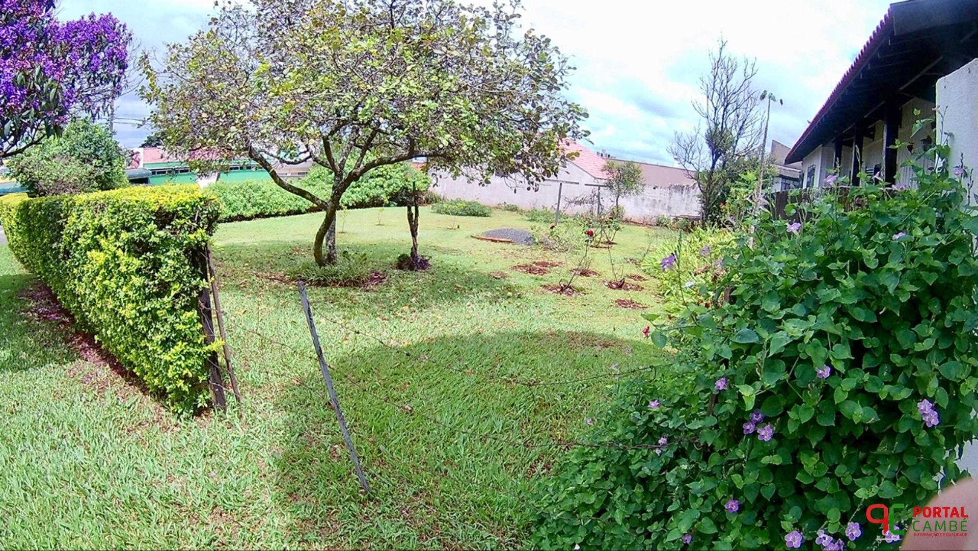 Terreno é exemplo de zelo no Parque Residencial Cambé