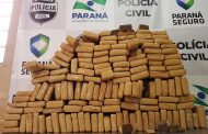 Polícia Civil de Cambé apreende mais de 130 quilos de drogas