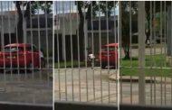 Vídeo mostra menina implorando para não ser deixada na rua pela mãe, em Curitiba